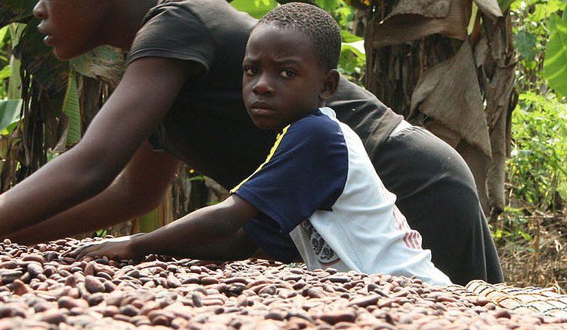Der Kampf gegen Kinderarbeit im Kakao- und Tabakanbau
